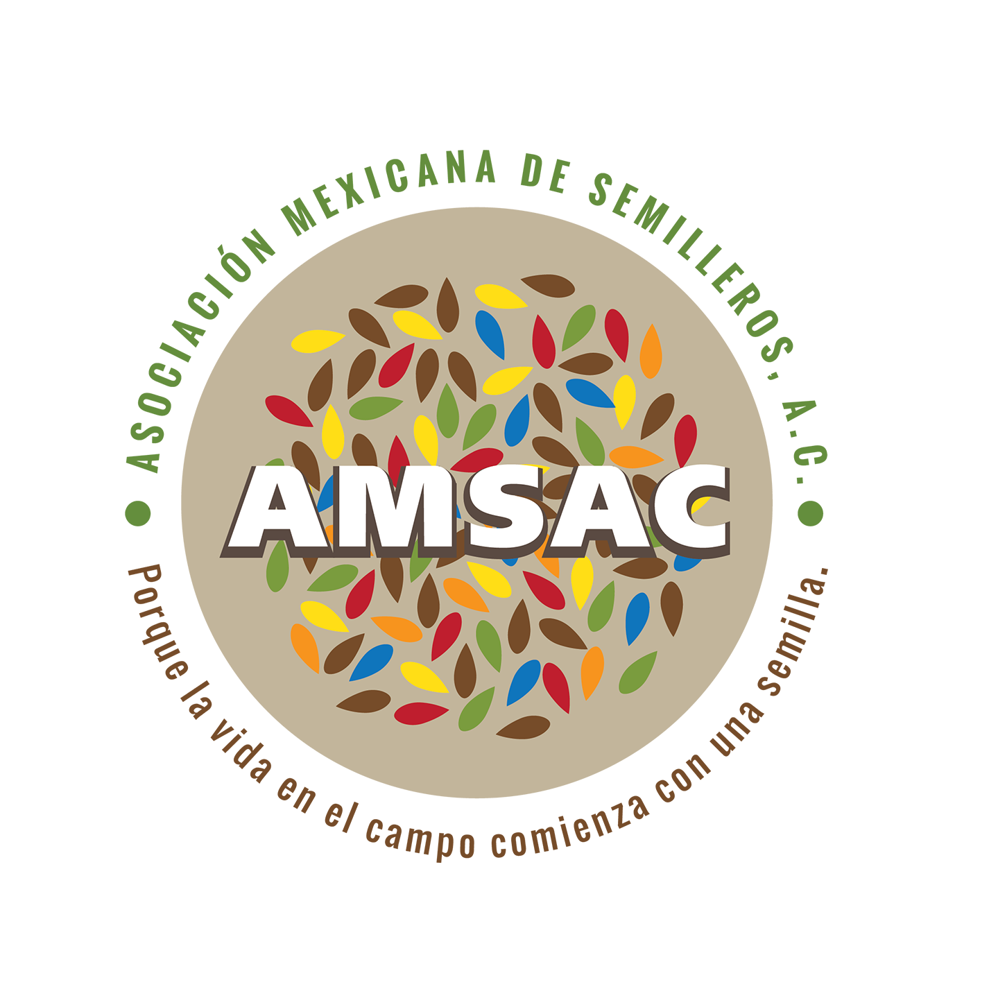Semillas Mejoradas - AMSAC